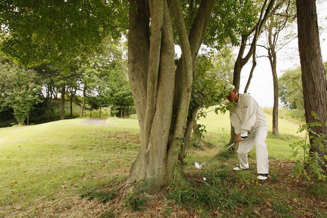 画像: ダフる、上げる、あと一個は? 林の中でやってはいけない「3つのこと」 - みんなのゴルフダイジェスト