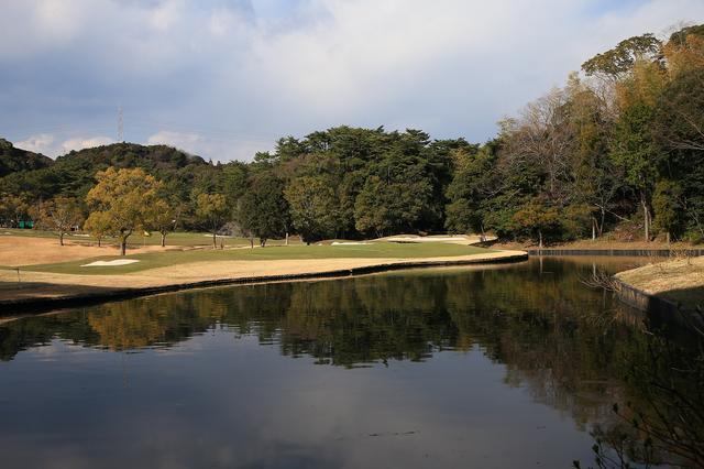 画像: グリーン後ろから。池がグリーンを囲む。奥にピンが切られると、難易度が一気に増す。果敢に攻められる選手はいるのか!?