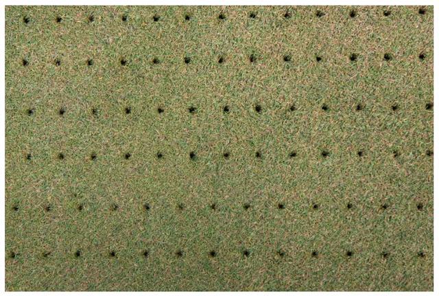 画像: 芝にあいた無数の穴、見たことありませんか? こちらは通常のエアレーション