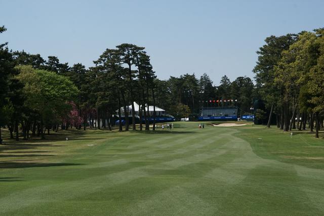 画像: 2打目地点からグリーンを望む。松の木を避けると右サイドは狭い