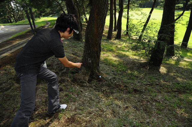 画像: 木の根にボールが……! 「アンプレヤブル」、正しく知ってる?【初心者ゴルファー応援団】 - みんなのゴルフダイジェスト