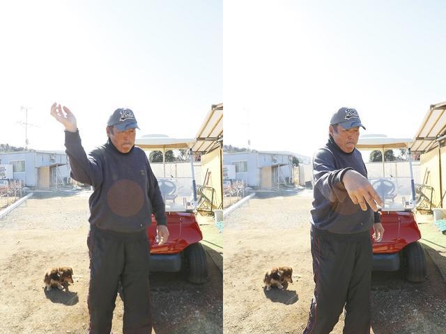 画像: 野球の手首の使い方をゴルフに応用