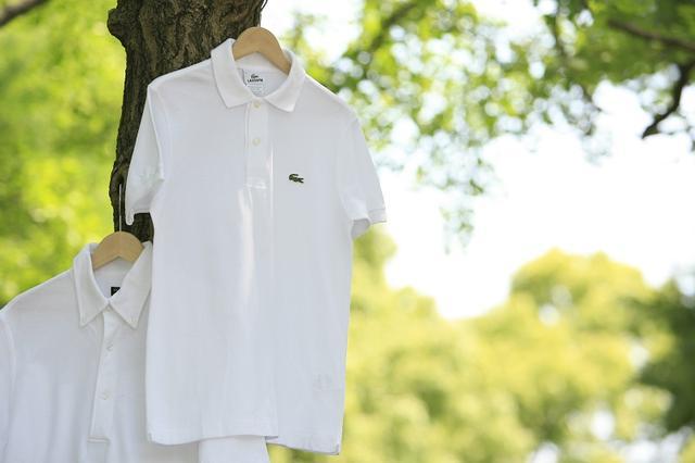 画像: 知ってる? ポロシャツを「3倍」長持ちさせる洗濯法! - みんなのゴルフダイジェスト