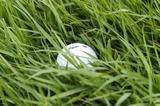 画像: 芝の寝方をよく見よう。ピン方向に芝が流れているのが順目。その反対が逆目だ