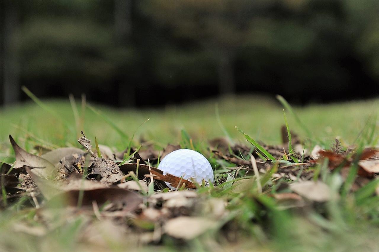 画像: 覚えて損なし! ゴルフ場の困った状況救済ルール【初心者ゴルファー応援団】 - みんなのゴルフダイジェスト
