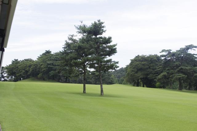 画像5: 中村寅吉設計の難易度特Aの丘陵コース