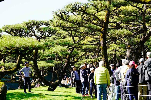 画像: 石川(写真左)の見つめる先の木の上に、ボールがある