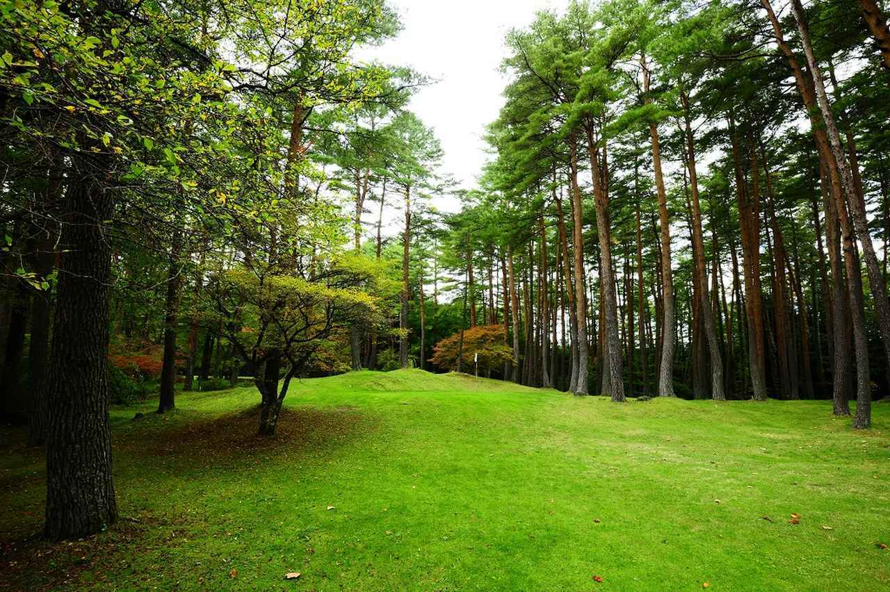 画像: 1番ホール・パー3(60ヤード)木々に囲まれたコースはフェアウェイを狭く感じさせる