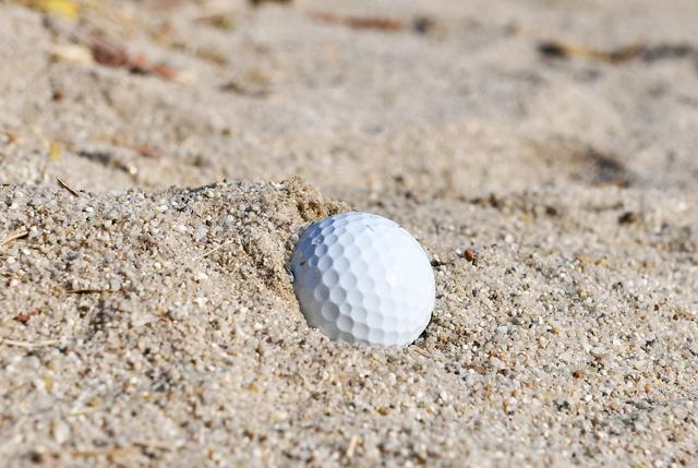 画像: 「砂に埋まっちゃっているわ!」
