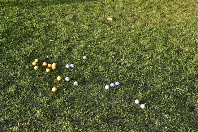 画像: オレンジボールはニアレストポイントを示す白いティの周辺に止まり、肩の高さから落とした白いボールは斜面を転がり静止地点はバラバラ
