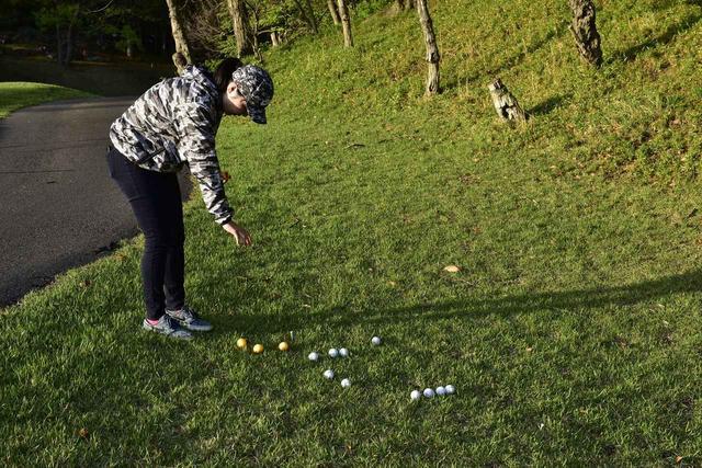 画像: 白いボールは肩の高さから、オレンジボールはひざの高さからそれぞれ10球ずつ落とした