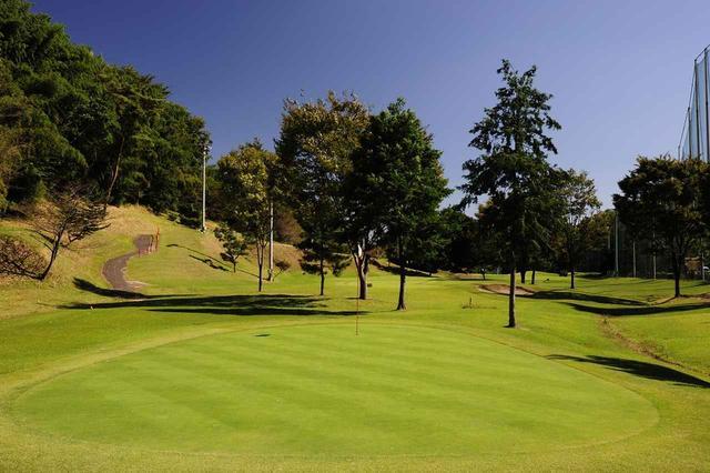 画像: 手入れが行き届いたベント芝のグリーン。攻略できればレベルアップ間違いなし!