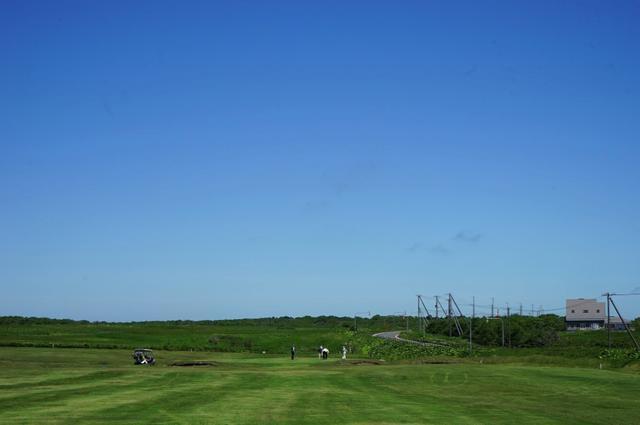 画像: 牧草地のような広大なコース
