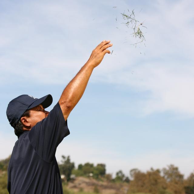 画像: 風を楽しむくらいの意識が欲しい
