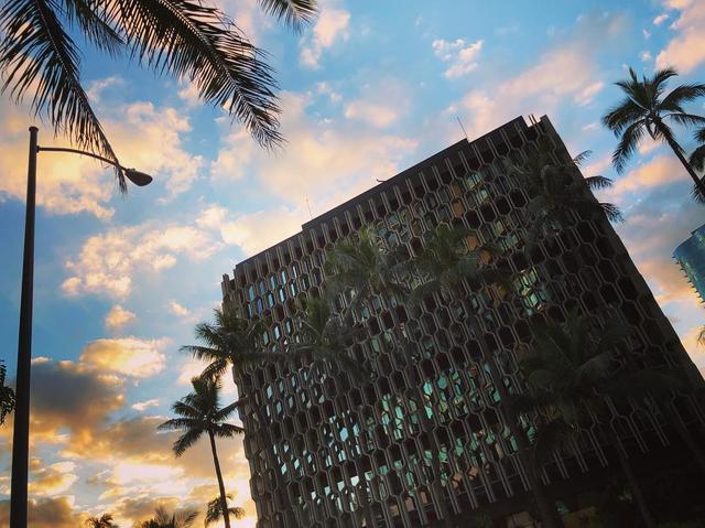"""画像1: Momoko3030 on Instagram: """"hawaiiに着きました 今日から3週間。 いい日もあればそうじゃない日もあるけど、元気に明るく頑張りたいと思います  目的意識をしっかり持って 焦らず体も心もtraining♀️ #hawaii#毎年恒例#ハワイ合宿 #team24#心技体#myway"""" www.instagram.com"""