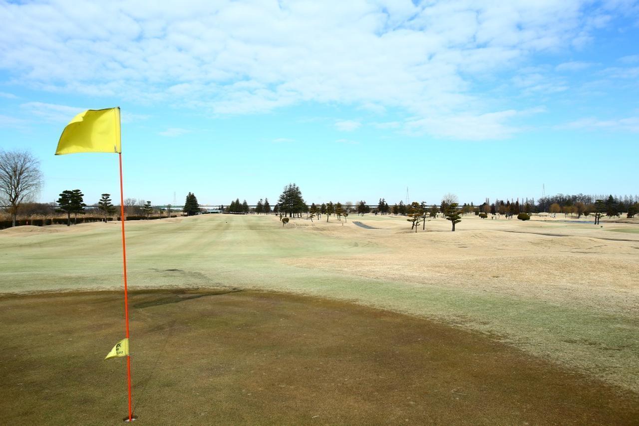 画像: ゴルフは「ネイチャーコース」が楽しい。ゴルフマナー研究家が老ゴルファーから教わったこと【脱俗のゴルフ】 - みんなのゴルフダイジェスト