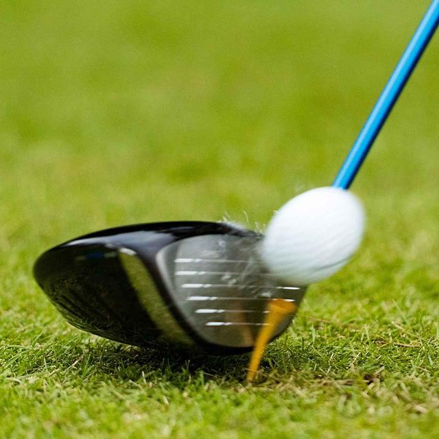 画像: 今回もアマゴルファーの喜び、嘆きの詰まった力作が集まった。オーイ、ボールよ! どこへ行く!?