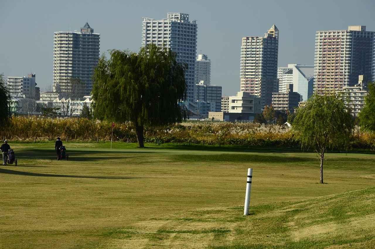 """画像: 足立区・荒川沿いでゴルフができる!? レジェンドも育った""""名門""""・新東京都民ゴルフ場 - みんなのゴルフダイジェスト"""