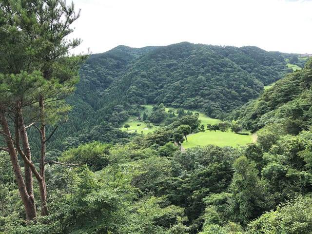 画像: 谷越えの14番パー3は山の中にポツンと見えるレイアウトで、落とし場所が難しい