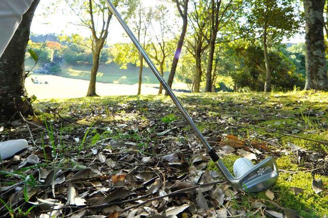 画像: ピンチのときこそ、ゴルファーのディフェンス力が問われる(撮影/増田保雄)