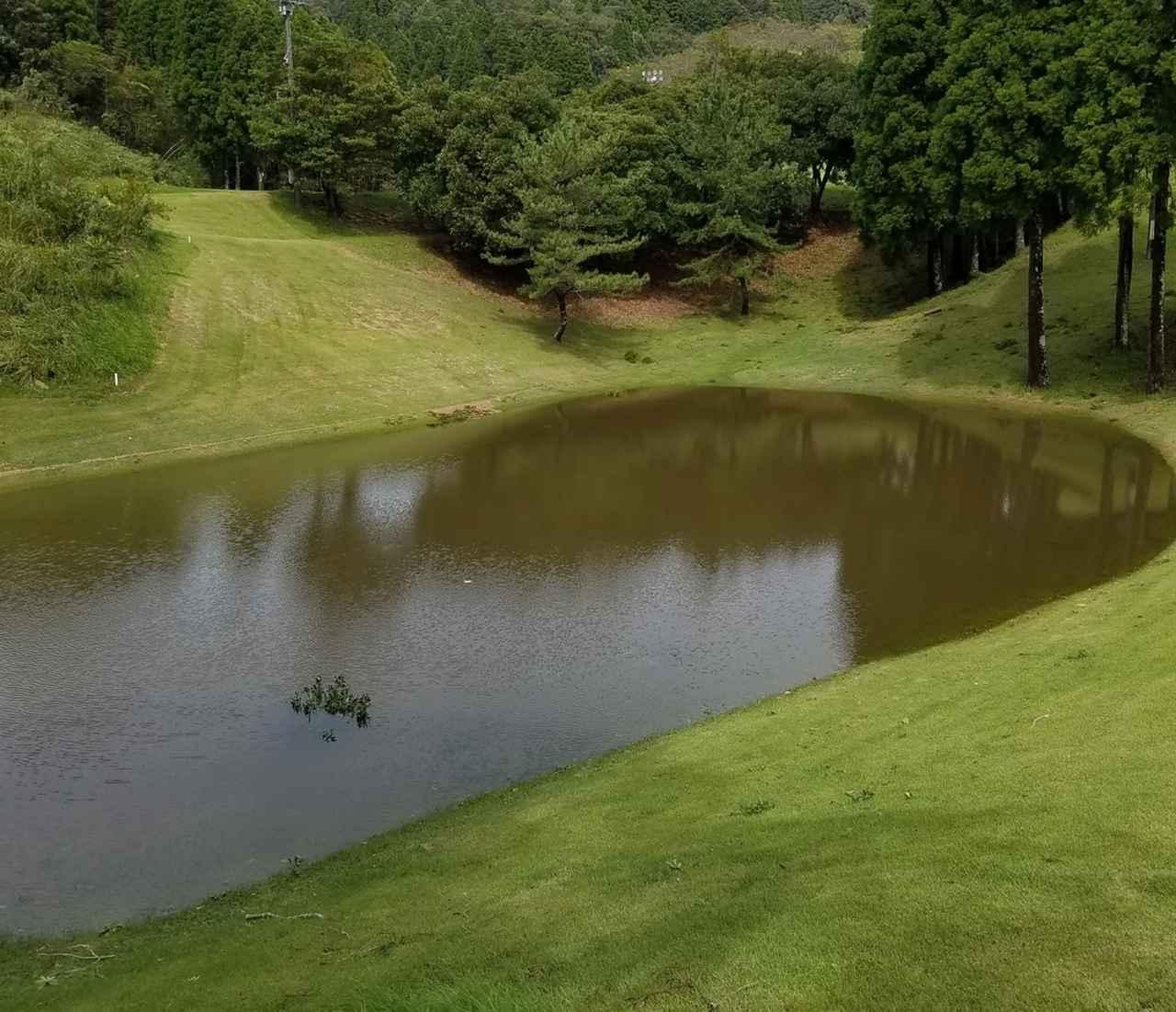 """画像: コースの池が茶色く変色しているのではない。もともとラフだった場所に、未明の台風による豪雨できた巨大な""""水たまり""""。今回の台風がいかに強烈だったかが想像できる"""