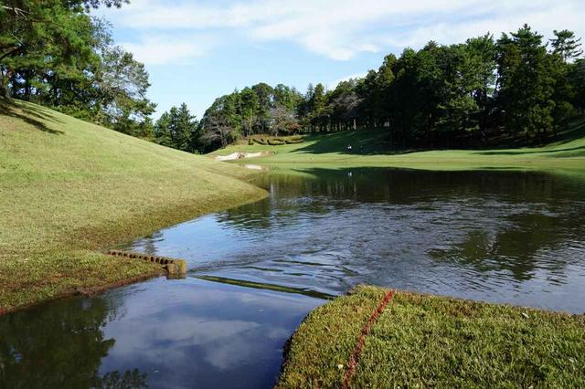 画像: 池からフェアウェイに水が流れ出してしまっている(撮影/姉崎正)