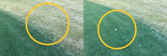 画像: 写真左が「枯れ芝」に埋まったボール、右が着色したフェアウェイ上にあるボール。見た目にも「探しやすさ」は明らかだ