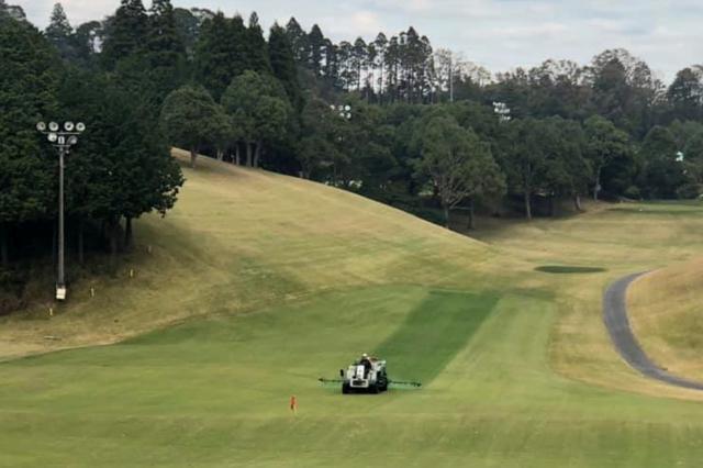 なぜゴルフ場は冬になると芝を緑に着色するのか? 「見栄えがいいから」だけじゃない深い理由