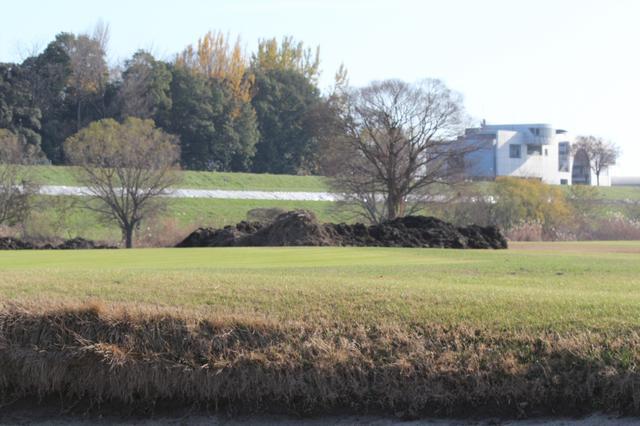 画像: 土手の中腹部に横一面に張られているシート(写真中央部)。渡良瀬川の水位はここまで上昇したという