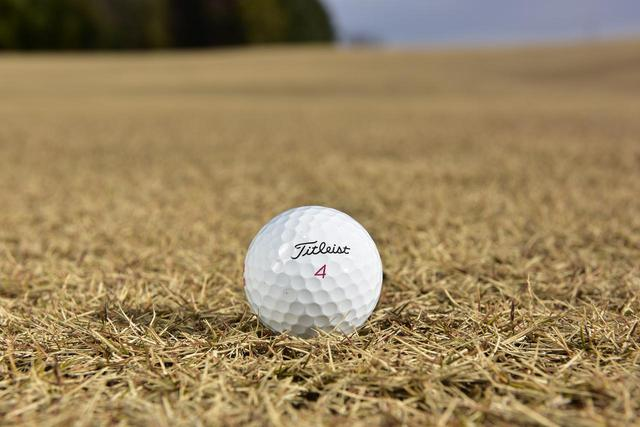 画像: 夏芝と違ってボールは浮いておらず、ボールにコンタクトする難しさがある冬芝(撮影/有原裕晶)