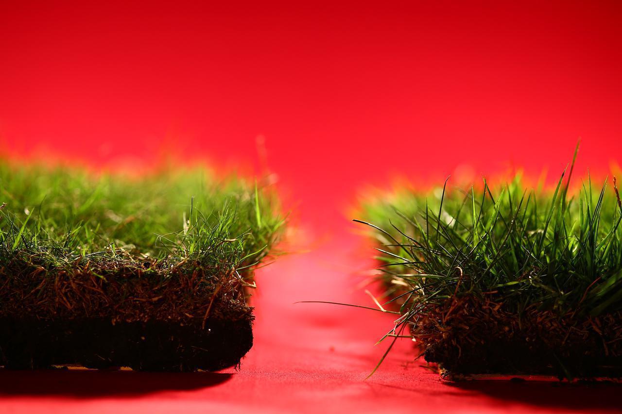 画像: 芝の種類や季節によってプレーの方法もクラブも変えられるのが一番の理想だ(撮影/三木崇徳)