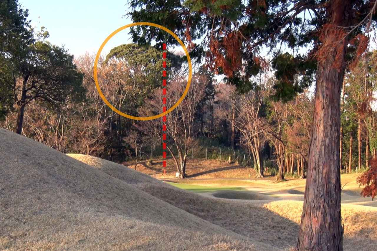 画像: 画像A:ピン後方に位置する木など、なにか目印を見つけよう