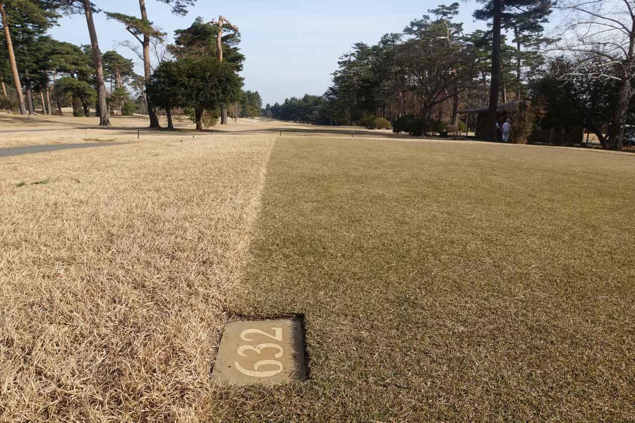 画像: 松山英樹が2打目をオーバーしたという14番632ヤードのパー5