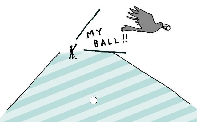 画像: カラスがボールを持っていった場合は、元の場所を推定してリプレースをしよう