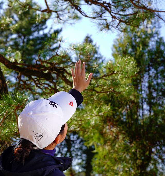 画像: 「うわー、木に引っかかっちゃったのね」