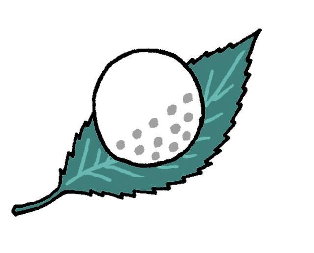 画像: Q:球の確認のため木の葉にのった球を拾い上げた。リプレースの際、木の葉を取り除ける?