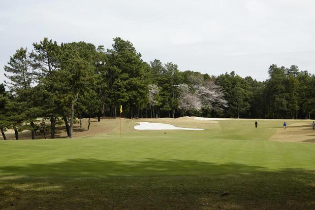 画像: 千葉県・太平洋クラブ八千代コース。都心からアクセスしやすいスループレー専用コースだ(写真は17番ホール パー5)