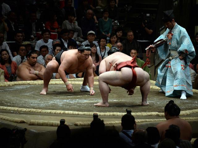 画像: 相撲は体の使い方を身につけやすい。本格的なものでなく、布団の上で押したり引いたりしてあげるだけで十分効果があるという