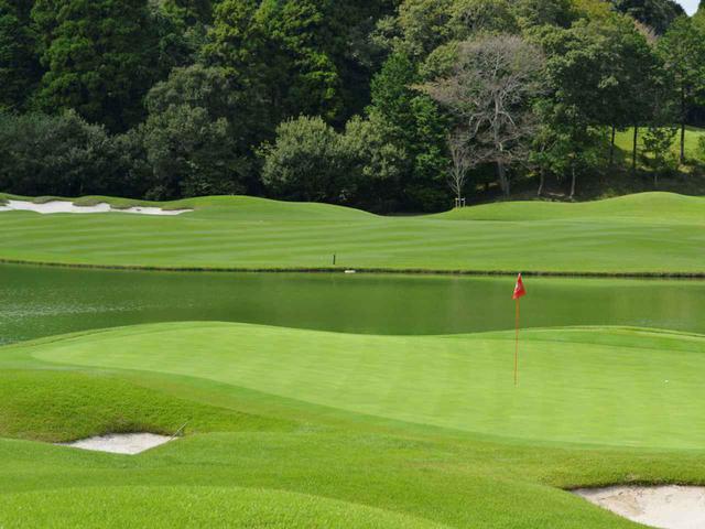 画像: フェアウェイ、ラフ、グリーン……コースの場所によって芝の種類が違う場合もある