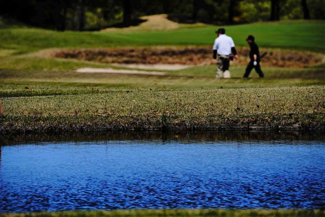スイッチ みんなの ゴルフ