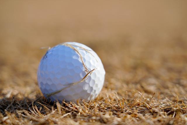 画像: 「芝カスがボールに張り付いているわね」