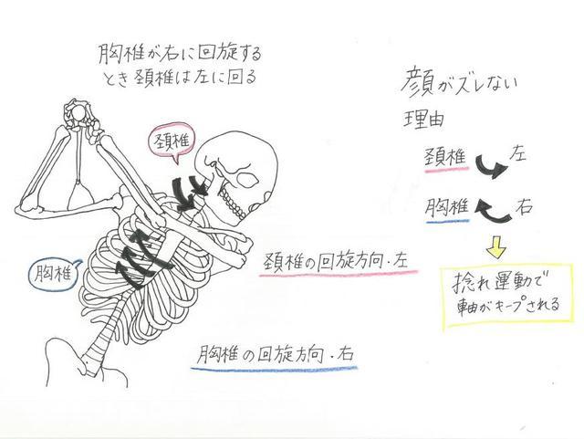 画像: 回旋した頚椎を戻す動作で軸を安定させることができる(イラスト提供/大谷奈千代)