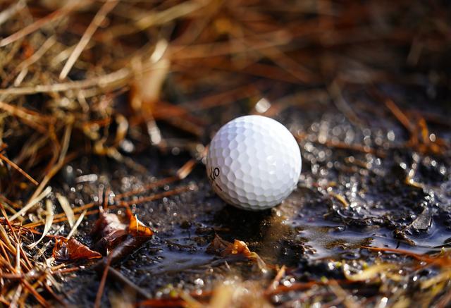 画像: 「あれ? ボールの周りに水が見えるわ」