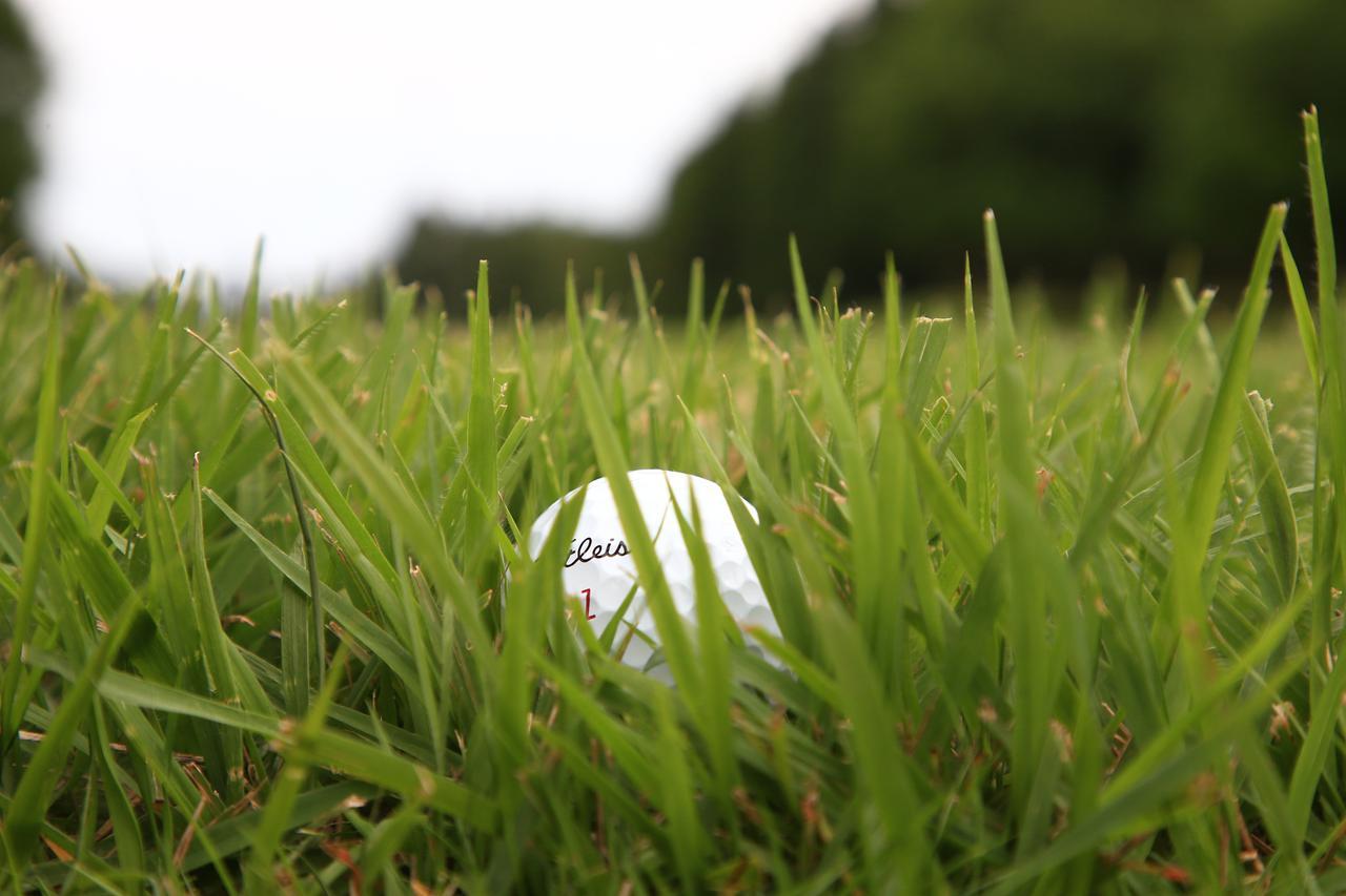 画像: 芝が伸び盛りの時期のラフからのアプローチはピンに寄せる難易度が上がる(写真/大澤進二)