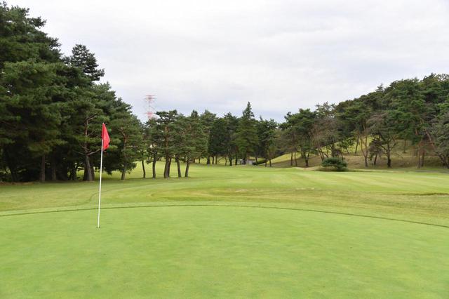 画像: つくば国際カントリークラブが実施する「わがままが叶うゴルフ体験」とは一体なに?(写真はイメージ 撮影/増田保雄)