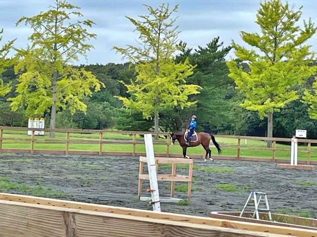 画像: アウトホール9番のセカンド地点近辺では馬も(ワーケーションのオプションで乗馬体験もできる!)