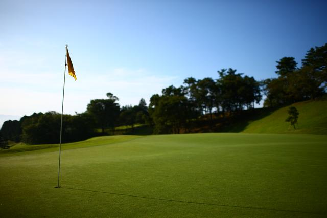 画像: 芝が元気な季節、午前と午後でグリーンは「別物」になる