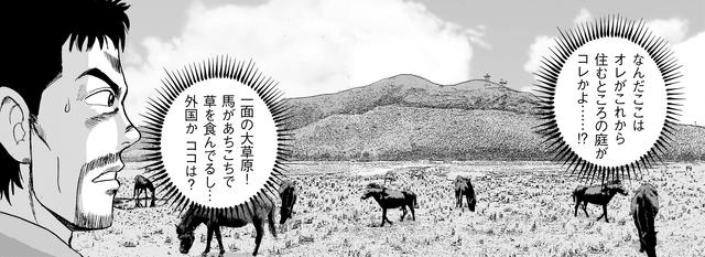 画像: 庭が大草原!