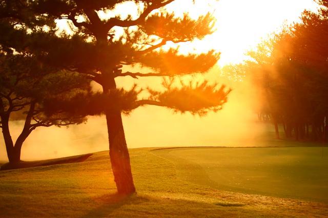 画像: 朝日によってオレンジ色に染め上げられた世界。幻想的!(撮影/三木崇徳)