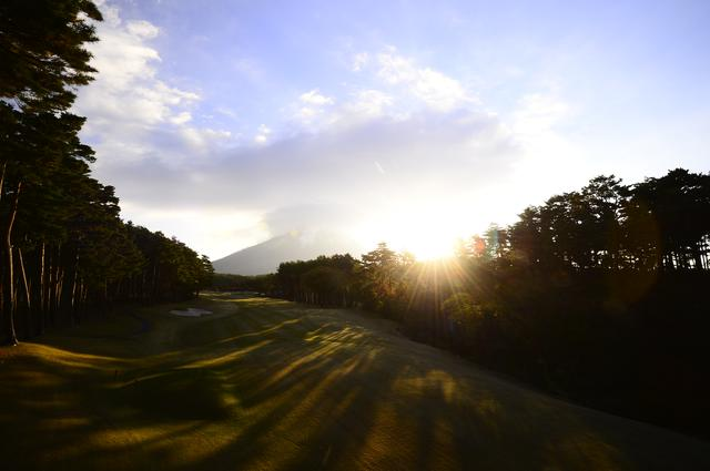 画像: 木々の間から差し込む朝日が不思議な影の模様を映し出す(撮影/横山博昭)
